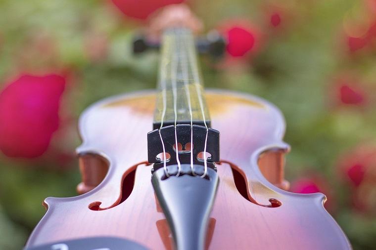 BIGUMAMAのバイオリン