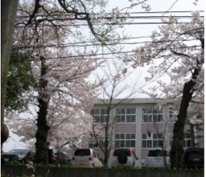 磯野泉さんの出身高校画像